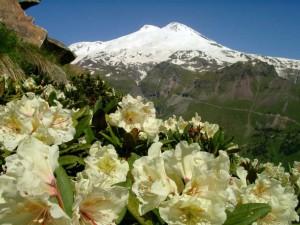 Кавказ. Самые высокие горы России